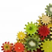 Gears made of fruit slices on white background — Stock Photo