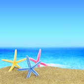 Colorful starfishes on the beach in front of a blue horizon — Stock Photo