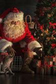 Santa Claus with cat — Stock Photo