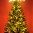 Christmas tree with gifts — Stock Photo #57688575