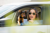 Frau und Hund im Auto — Stockfoto