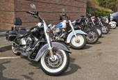 Harley Davidson motorcycles lined up — Stock Photo