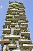 Vertical Forest apartment building in the Porta Nuova area of Mi — Stok fotoğraf