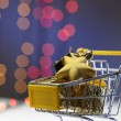 Shopping cart for the christmas — Stock Photo #65067573