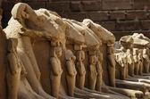 Ruiny świątyni karnak — Zdjęcie stockowe