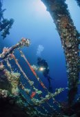 Wreck diving, Umbria wreck — Stock Photo