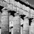 Italy, Sicily, Segesta, Greek Temple — Stock Photo #56605755