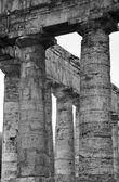 Italy, Sicily, Segesta, Greek Temple — Stock Photo