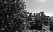 Italy, Sicily, Selinunte — Photo