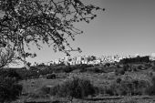 Agrigento, panoramic view of the town — Stock Photo