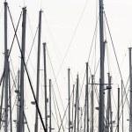 Постер, плакат: Sailing boat masts in the marina