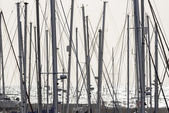 Sailing boat  masts in the marina — Стоковое фото