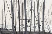 Sailing boat  masts in the marina — Stock Photo
