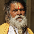 Old indian Sadhu in a Hindu Temple — Stock Photo #77851804
