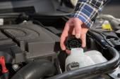 車のエンジンの水容器を検査します。 — ストック写真
