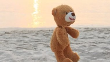 Bear marionette on beach. — Stockvideo
