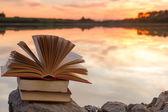 Pile de livre et livre relié au ouverte sur fond de paysage de nature floue contre ciel coucher de soleil avec rétro-éclairage. Copiez l'espace, retour à l'école. Contexte de l'éducation. — Photo