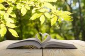 Otevřená kniha na dřevěný stůl na přírodní rozostřeného pozadí. Stránky knihy srdce. Zpátky do školy. Kopírovat prostor — Stock fotografie