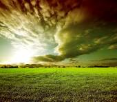 Sunset green fields landscape. — Stock Photo