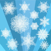 Blue Transparent Snowflakes — Stock Vector