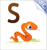 Animal alphabet for the kids: S for the Serpent — Stock Vector