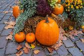 Halloween ornament at autumn — Stock Photo