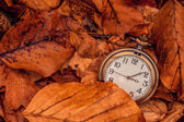 Clock in autumn leaves — Fotografia Stock