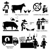 Natural Organic Food Meat Beef Chicken Poultry Stick Figure Pictogram Icons — Stock Vector