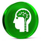 Neurology — Stock Photo