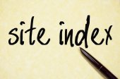 Site index text write on paper — Stock Photo