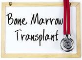 Bone marrow transplant text write on blackboard — Stock Photo