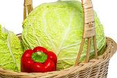 Savoy cabbage — Stock Photo