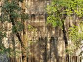 Reduce heat to buildings with lath wood and trees. — Stock Photo