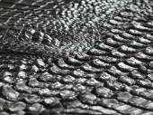 Perspective image of beautiful crocodile bone skin texture — Stock fotografie