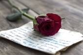 Love letter and rose — Stock Photo