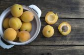 Freshly Picked Apricots — Stock Photo