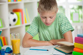 Cute schoolboy reading and  studying — Stock Photo