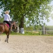 Beautiful blonde woman riding a horse — Stock Photo #72367189