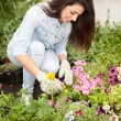 Young smiling woman florist working in the greenhouse — Stock Photo #73384461