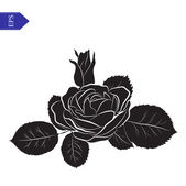 Flower and leaves of roses in black and white vector — Vector de stock