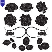 Set of different flower and leaves of roses vector — Stockvektor