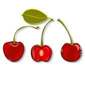 Hand-drawing juicy cherries vector — Stock Vector