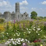 Photography famous irish landmark, quin abbey, county clare, ire — Stock Photo #67891805