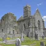 Photography famous irish landmark, quin abbey, county clare, ire — Stock Photo #67892207