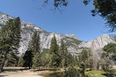 Photo yosemite national park on a beautiful sunny day — Stock Photo