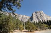 Photo yosemite national park on a beautiful sunny day — Foto de Stock