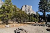 Photo yosemite national park on a beautiful sunny day — Foto de Stock