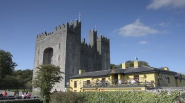 County Clare, Ireland - Sept 8, 2015: Ireland's Most Famous Public Bunratty Castle And Durty Nelly's Pub, County Clare, Ireland — Stock Video