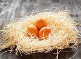 Uova di gallina in un nido. — Foto Stock