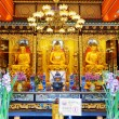 Golden Buddha statues in the temple, Po Lin Monastery in Hong Ko — Stock Photo #65781491